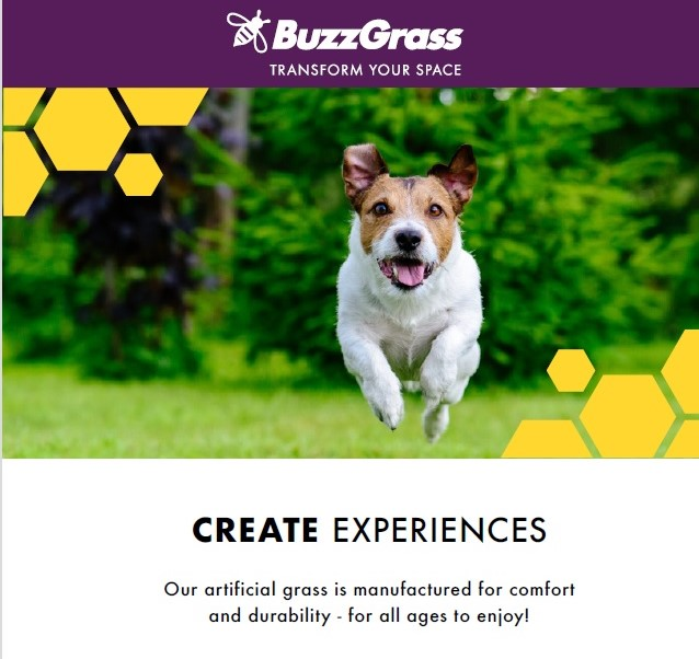 Get 10% discount at BuzzGrass