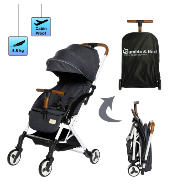 Mumzworld, Dubai mums, Bumble and Bird Stroller